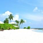 De Internet Levensstijl – Je Geld Verdienen vanaf een Zonovergoten Tropisch Palmeiland